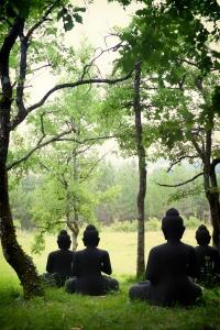 Buddha Hill at Upper Hamlet
